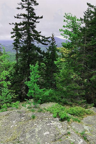 Ragged Mountain Trail May 2018