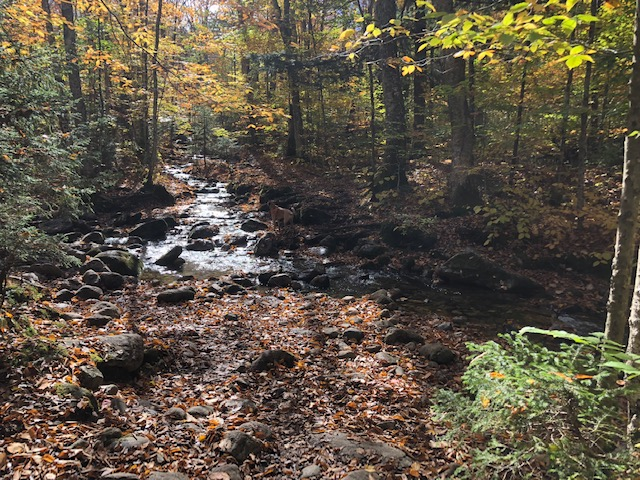 Garfield Trail Oct 14