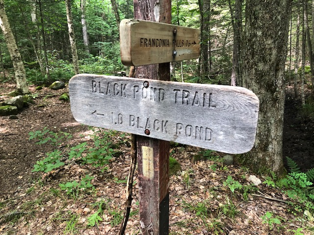 Black Pond Trail